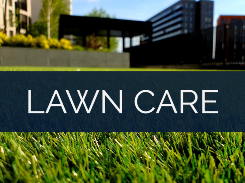 RANK IN THE CITY - CHARLOTTE NC | INTERNET MARKETING SERVICE | GROW YOUR BUSINESS | Lawn Care - Industry